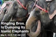 Ringling Bros.: No More Elephants at the Circus