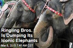 Ringling Bros.: No More Elephants at the Circus