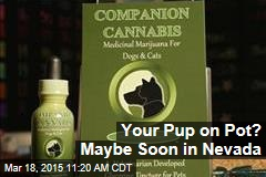 Your Pup on Pot? Maybe Soon in Nevada