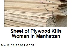 Sheet of Plywood Kills Woman in Manhattan