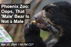 Phoenix Zoo: Oops, That 'Male' Bear Is Not a Male