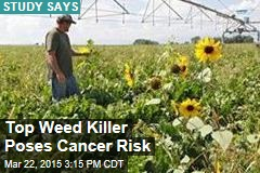 Popular Weed Killer Poses Cancer Risk