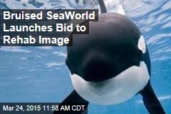 Bruised SeaWorld Launches Bid to Rehab Image