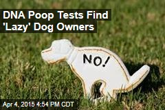 DNA Tests Link Dog Poop to 'Lazy' Owners