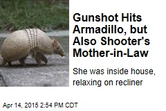 Shot Bounces Off Armadillo, Finds Man's Mother-in-Law