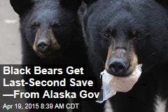 Black Bears Get Last-Second Save —From Alaska Gov