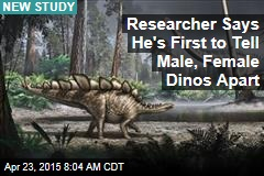 Researcher Says He's First to Tell Male, Female Dinos Apart