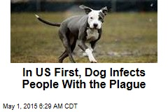 In US First, Dog Infects People With the Plague