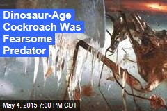Dinosaur-Age Cockroach Was Fearsome Predator