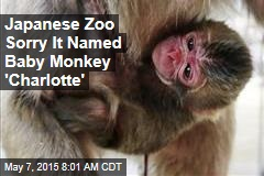 Japanese Zoo Sorry It Named Baby Monkey 'Charlotte'