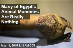 Many of Egypt's Animal Mummies Are Really ... Nothing