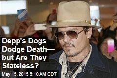 Depp's Dogs Dodge Death— but Are They Stateless?