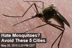 5 US Cities Most Plagued by Mosquitoes