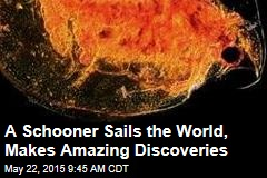 A Schooner Sails the World, Makes Amazing Discoveries