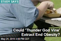'Thunder God Vine' Could Stop Obesity