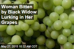 Woman Bitten by Black Widow Lurking in Her Grapes