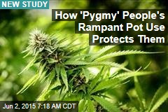 How 'Pygmy' People's Rampant Pot Use Protects Them