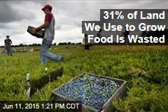31% of Land We Use to Grow Food Is Wasted