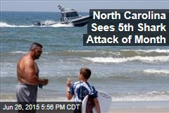 North Carolina Sees 5th Shark Attack of Month