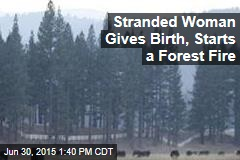 Mom's Exploit: A Wilderness Birth, Bees, Forest Fire