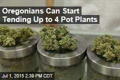 Oregonians Can Start Tending Up to 4 Pot Plants