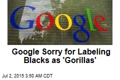 Google Sorry About Algorithm's Racist Error