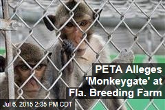 PETA Alleges 'Monkeygate' at Fla. Breeding Farm