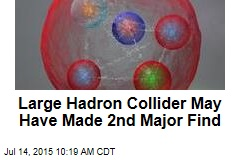 Large Hadron Collider May Have Made 2nd Major Find