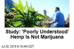 Study: 'Poorly Understood' Hemp Is Not Marijuana
