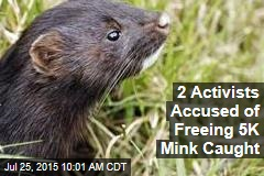 2 Activists Accused of Freeing Thousands of Mink Are Caught