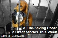 A Life-Saving Pose: 5 Great Stories This Week