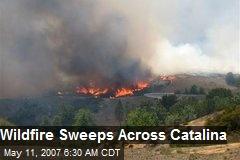Wildfire Sweeps Across Catalina