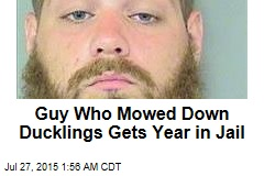 Guy Who Mowed Down Ducklings Gets Year in Jail
