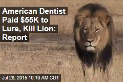 American Dentist Paid $55K to Lure, Kill Lion: Report