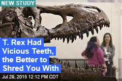 T. Rex Had Vicious Teeth, the Better to Shred You With