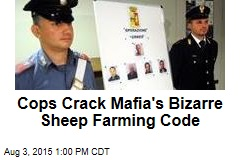 Cops Crack Mafia's Bizarre Sheep Farming Code