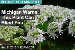 Michigan Warns: This Plant Can Blind You