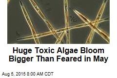 Huge Toxic Algae Bloom Bigger Than Feared in May