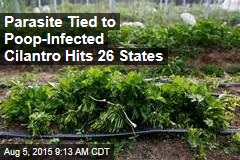 Parasite Tied to Poop-Infected Cilantro Hits 26 States