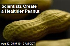 Scientists Create a Healthier Peanut