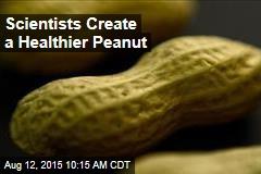 Scientists Create a Healthier Peanut