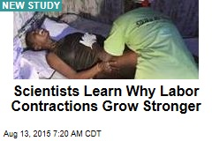 Scientists Learn Why Labor Contractions Grow Stronger