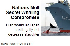 Nations Mull Secret Whaling Compromise