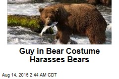Guy in Bear Costume Harasses Bears