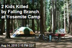 2 Kids Killed by Falling Branch at Yosemite Camp
