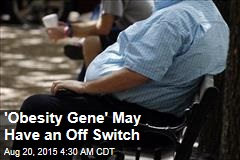 'Obesity Gene' May Have an Off Switch