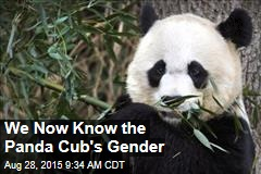 It's a Boy for Mei Xiang and Papa Tian Tian