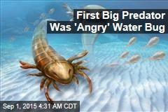First Big Predator Was 'Angry' Water Bug