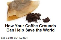 How Your Coffee Grounds Can Help Save the World