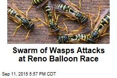 Swarm of Wasps Attacks at Reno Balloon Race